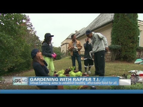 CNN's Dr. Sanjay Gupta and rapper TI plant a winter garden