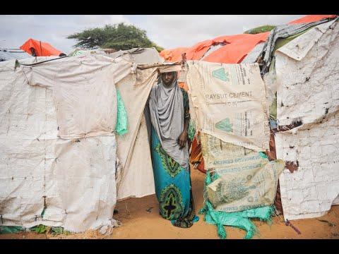 اليوم.. العالم يحيي اليوم العالمي للاجئين  - 19:23-2018 / 6 / 20