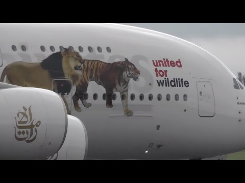 Emirates A380 (United for Wildlife livery) A6-EEI Takeoff from Birmingham Airport