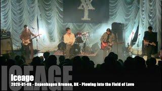 Iceage - Plowing into the Field of Love - 2020-01-08 - Copenhagen Bremen, DK