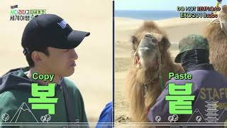 [ENG SUB] Travel the world on EXO's ladder Behind Cut 4