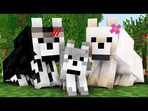 Wolf Life: The Birth -- Minecraft Animation - Видео из Майнкрафт (Minecraft)