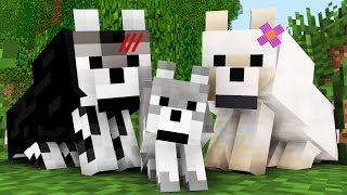 Wolf Life: The Birth -- Minecraft Animation