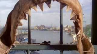 JAWS Filming Locations 2015