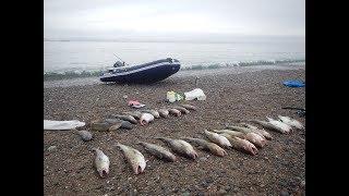 Правильные снасти для ловли трески в Баренцевом море!