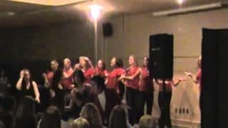 "Hamline University Dance Team, Lip Sync 2011: ""Thriller/Heads Will Roll"""