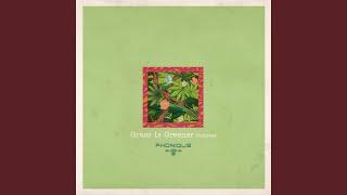 Grass Is Greener (Kruse & Nuernberg Remix)