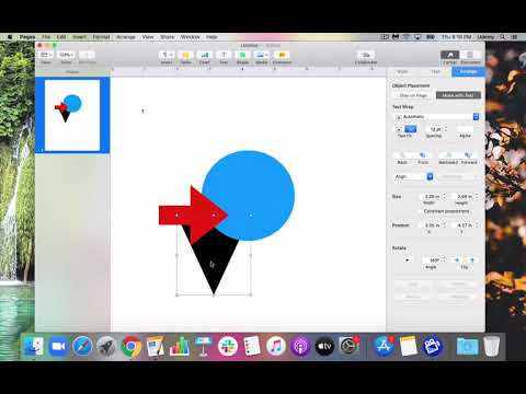 Apple Pages: Shapes and Text Boxes