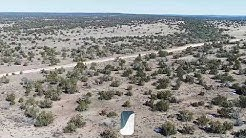 38.7 Acres - Saint Johns, AZ - Covered in Trees and Access to Water