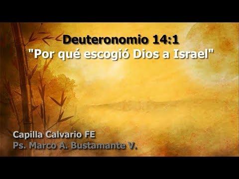 Deuteronomio 14:1 - POR QUE ESCOGIÓ DIOS A ISRAEL