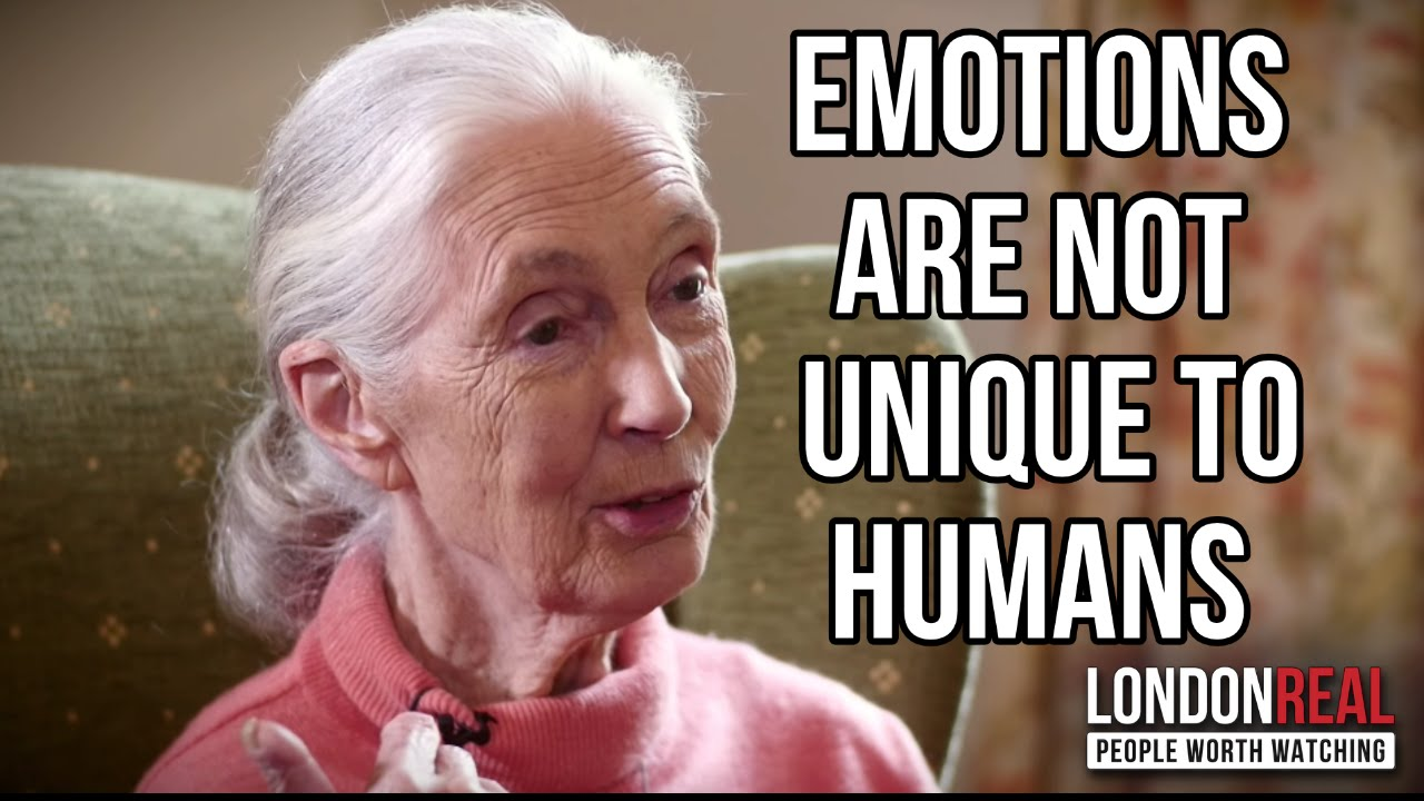 WHY EMOTIONS ARE NOT UNIQUE TO HUMANS - Dr. Jane Goodall on London Real