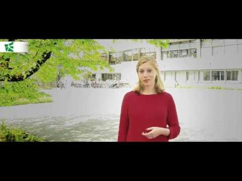 Student's Testimonial - Master in International Law