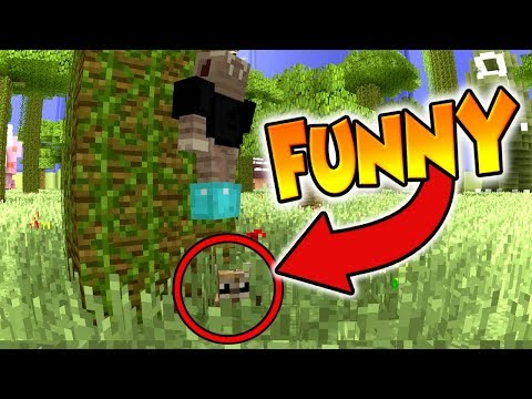 Minecraft Xbox - Hide and Seek : FUNNY GROUP MADNESS !! : Dino Jungle