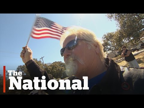The Voters of Trump Nation