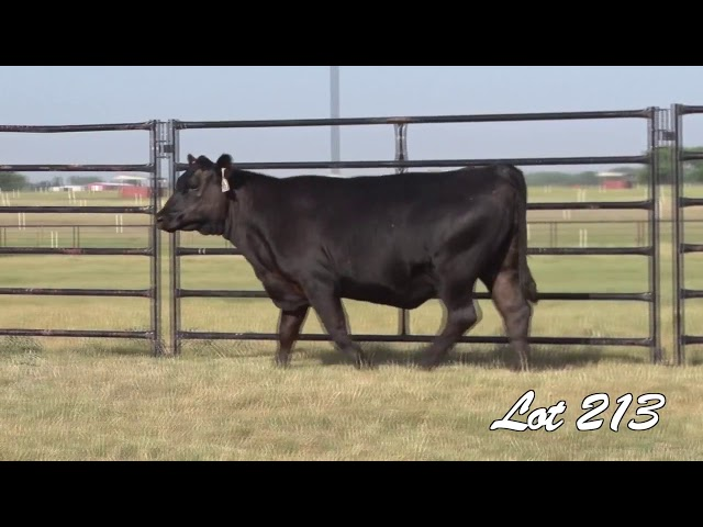 Pollard Farms Lot 213