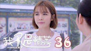 我不是精英 | I'm Not An Elite 36【TV版】(雷佳音、鄧家佳、莫小棋等主演)