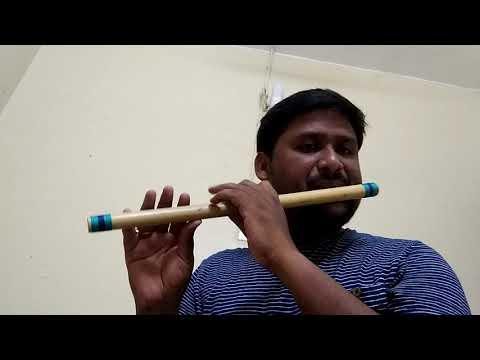 Dalapathi - Sundari kannal oru Flute Cover