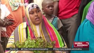 Somali President wants a complete boycott of khat