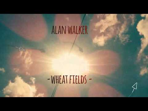 Alan Walker - wheat fields