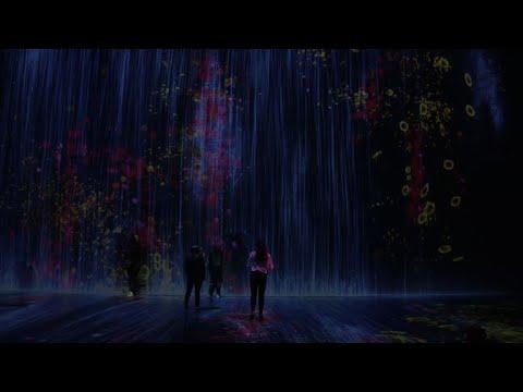 Immersive digital art exhibition opens in Paris