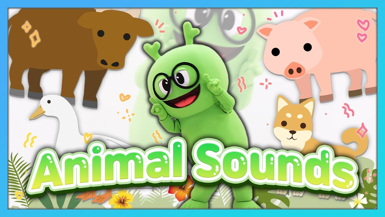 영어동요율동 BEST 인기동요율동    Animal Sounds   오리는 꽥꽥! 돼지는 꿀꿀!   규리와 Dance along!   영어율동