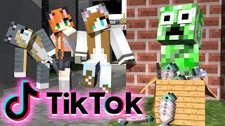 Monster School : TikTok Challenge NOOB vs PRO in Minecraft - Minecraft Animation