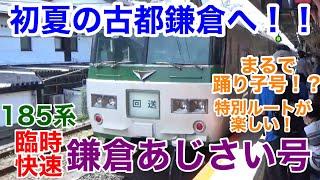 【青梅→鎌倉】初夏の鎌倉へ!185系臨時快速「鎌倉あじさい号」の記録