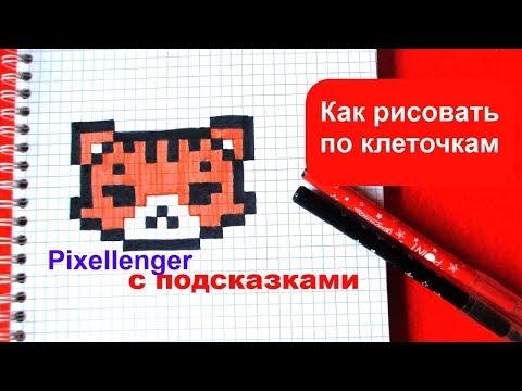 Как нарисовать Тигренка по клеточкам How to Draw Tiger Pixel Art