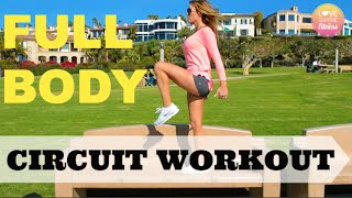 Easy Full Body Circuit Workout!