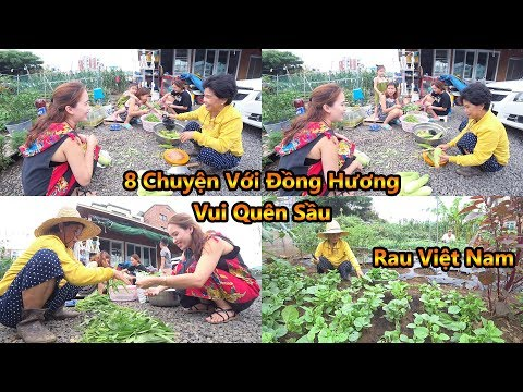 Vườn Rau Việt Nằm Trên Đảo Jeju (Vietnam Vegetables) [Cuộc Sống Hàn Quốc]
