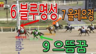 경마 2020년 11월 21일 (토) 제1경주 제주 6…