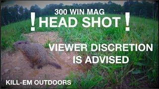 Graphic Head Shot (300 WIN MAG)
