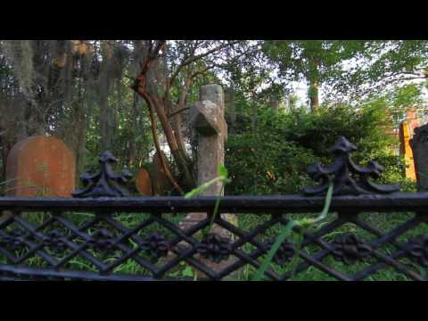 Tour Charleston LLC - Ghost Tours