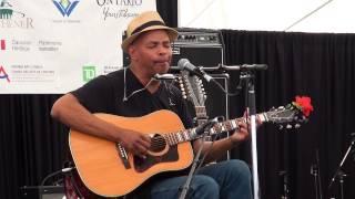 Guy Davis - Little Red Rooster - Live at Kitchener Blues (KBF) Festival 2015