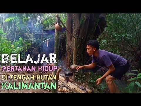 Bermalam Di Tengah Hutan Kalimantan