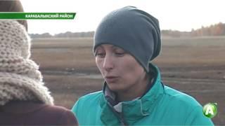 Скотокрады регулярно перегоняют коров и лошадей из Казахстана в Россию