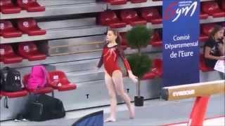 2015 - 2016 La route de Rio pour l'équipe de France féminine de Gymnastique Artistique