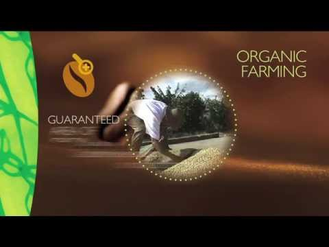 The value of organic coffee