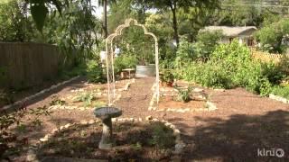 Food And Flowers Vegetable Garden Design|ellie Hanlon|central Texas Gardener