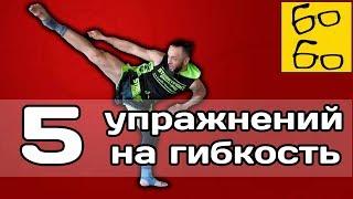 Тренировка гибкости для ударов ногами! 5 упражнений на гибкость бедер и таза от Анвара Абдуллаева