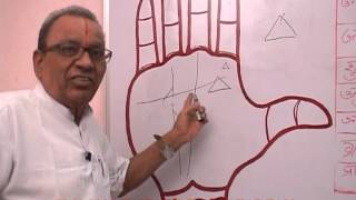 PALMISTRY PART   22 IN HINDI