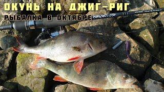 Крупный Окунь в Октябре на Джиг Риг рыбалка на спиннинг с берега на Волге в Тольятти