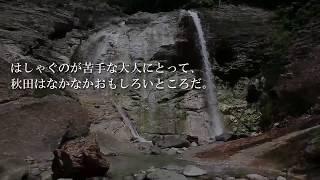 湯沢市「川原毛地獄」のすぐ近くに、温泉が流れ落ちる滝「大湯滝」があ...