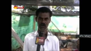 Nellore Lemon Cultivation Success Story | Raitu Rajyam 26th November 2014