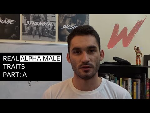 Real Alpha Male Traits - Part: A | Personal Development | Warrior Life