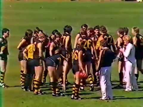 1985 SANFL Grand Final - Glenelg vs North Adelaide