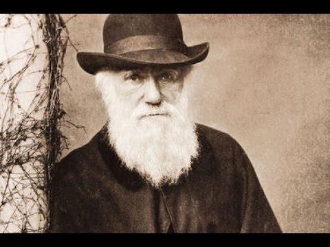 Planet Wissen - Charles Darwin und die Artenvielfalt