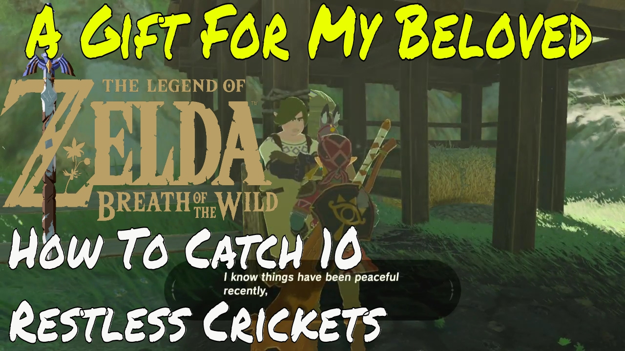 The Legend Of Zelda Breath Of The Wild A Gift For My Beloved