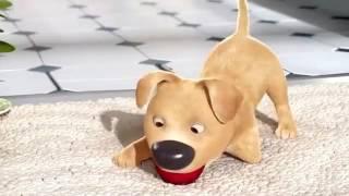 Очень трогательный мультфильм о мальчике и щенке