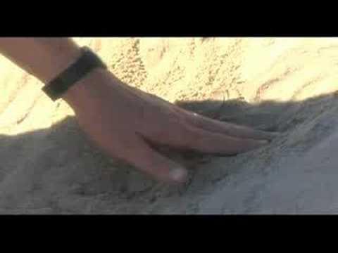 Keyline Design at the Beach (1) Darren Doherty